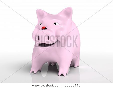 Smiling Piggy Bank With Ladybird On Nose