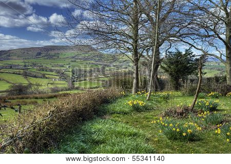 Welsh Countryside Garden