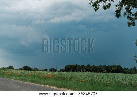 Storm Filled Sky