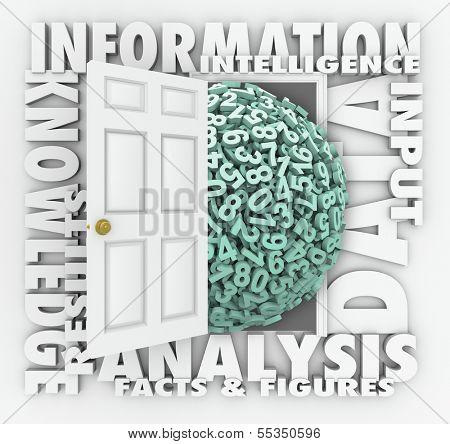 Data Information Door Opening Insight Analysis Numbers Figures