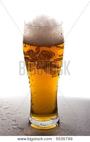 Light Beer In Tall Glass