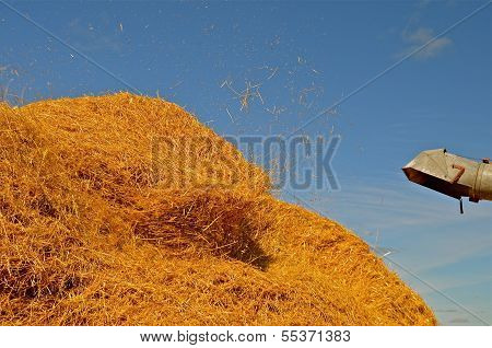 The golden straw pile from harvest