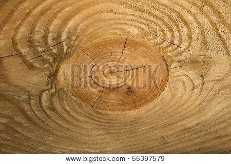Rough-hewn Timber