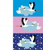 Stork delivering a newborn girl and  boy poster