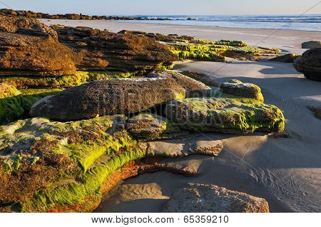 Beach Rocks At Daybreak