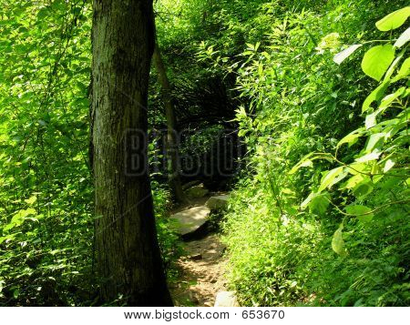 naturepath