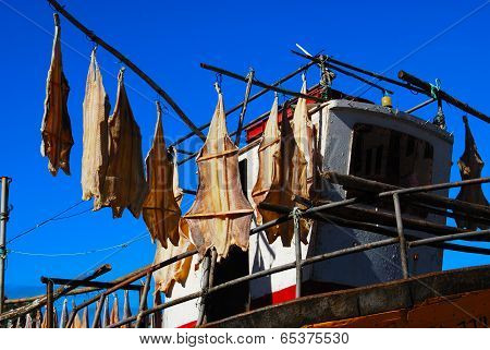Fish drying on the boat in Camera de Lobos, Madeira