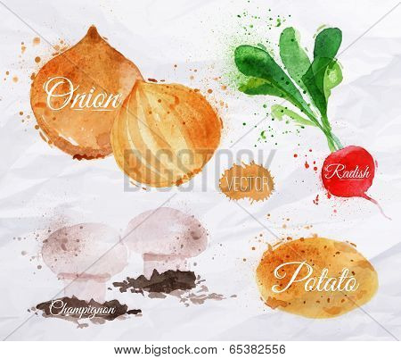 Vegetables watercolor radishes, onions, potatoes, champignons