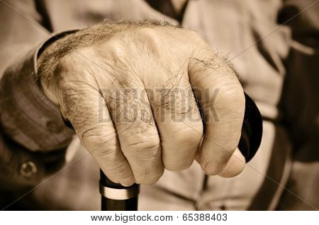 closeup of the hand of an old man with a walking stick