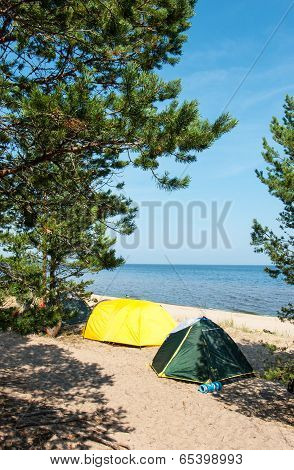 Camping Site At Ladog Lake