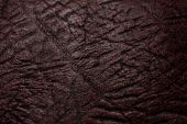 Bark or old wood pattern for background or texture poster