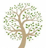 Stylized colorful tree icon, vector illustration for your design poster