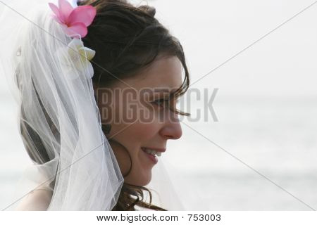 Bride Profile with Veil on Beach