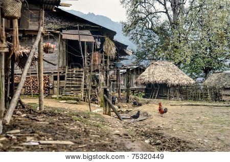 Yard In India