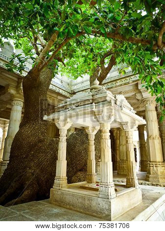 Tree In Ranakpur Jain Temple