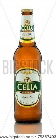 Gluten Free Beer Celia Lager