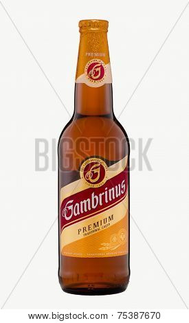 Gambrinus Premium Traditional Lager Beer