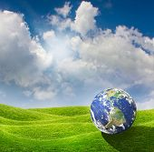 Planet Earth goes on a vacation at a beautiful green meadow. Beautiful spring sunny day with blue cloudy sky poster