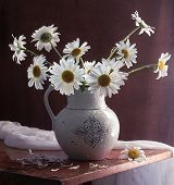 Still-life with a bouquet from gentle garden camomiles, a bouquet from white garden camomiles in a jug for colours poster