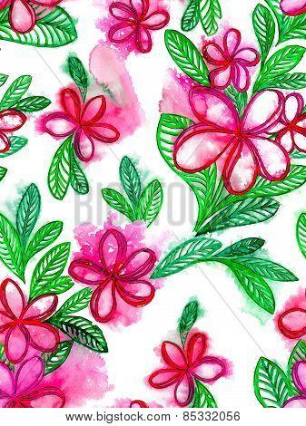 plumeria / frangipani flowers