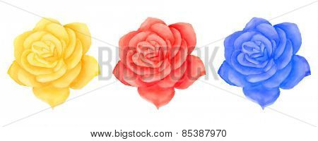 Vector illustration of roses painted in watercolor