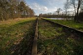 """Old railway line """"Borkense Course"""" near the German border in the municipality of Winterswijk. Previously ran here a railway line from Winterswijk to Borken in Germany. In 1989, the grounds of the Dutch railways transferred to a protected natural poster"""