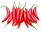 red chili or chilli cayenne pepper isolated on white  background cutout poster