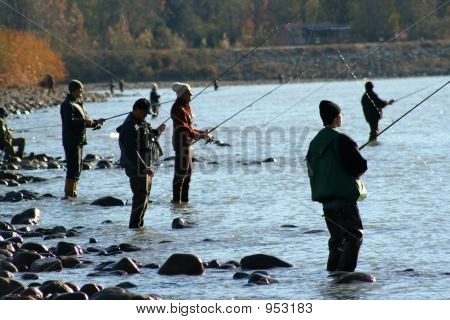 Everyone Is Fishing