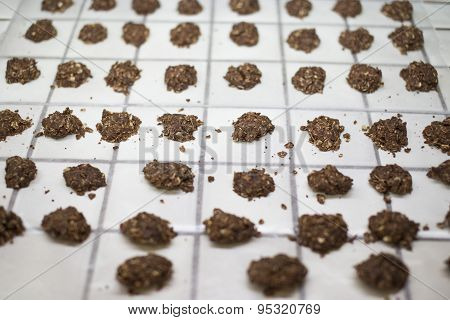 Collection Seta of No Baked Cookies in Rows Cooling