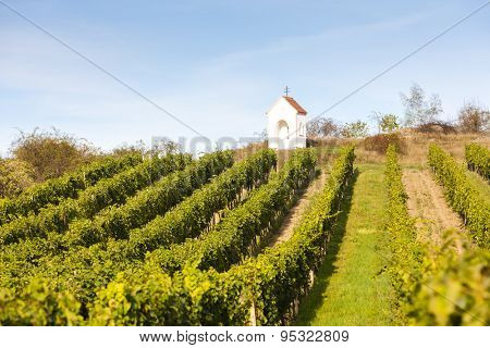 God's torture near Hnanice with vineyard, Southern Moravia, Czech Republic