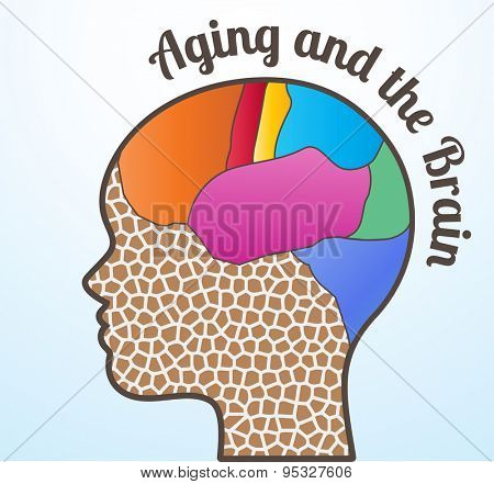 Aging and the brain woman profile