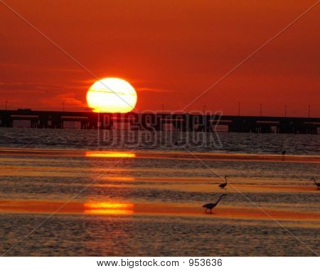 Sunset On The Skyway