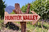 Hunter Valley wooden sign with winery background poster