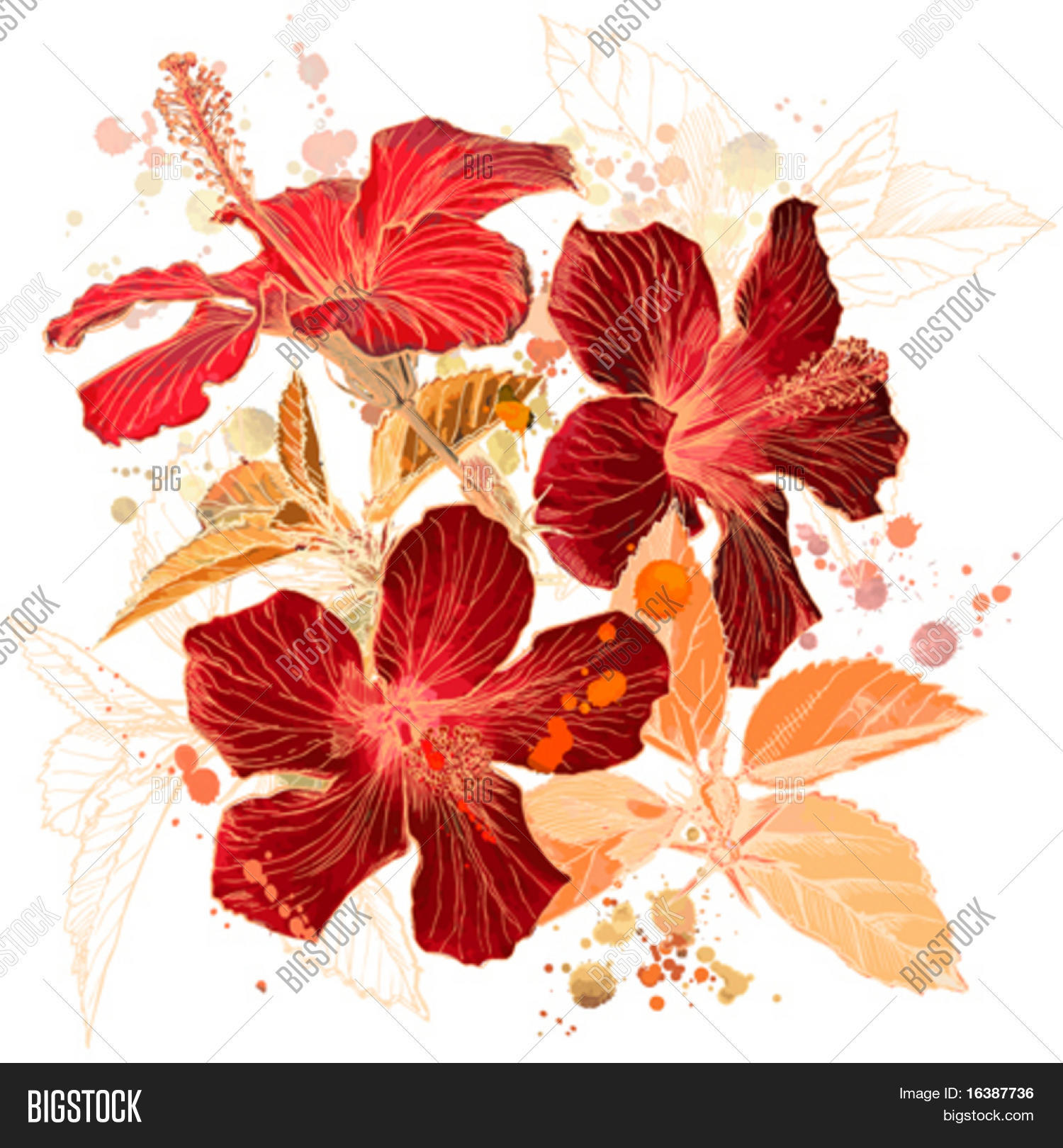 Hibiscus flower vector photo free trial bigstock hibiscus flower vector watercolor paint elements on separate layers izmirmasajfo