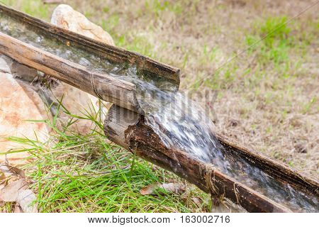 Natural clear water flowing into bamboo pipes.