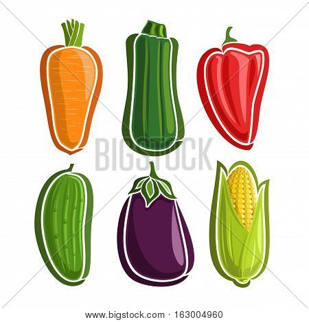 Vector Set Vegetables simple Logo: carrot, zucchini, red bell pepper, cucumber, eggplant, corn with green leaf; abstract primitive simplistic vegetables logo or minimalistic icon, isolated on white.