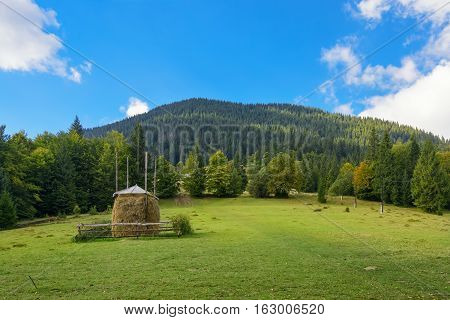 Haystack. Meadow piece of grassland especially one used for hay. Carpathian Mountains Ukraine.