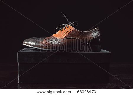 stylish brown male shoes on black box