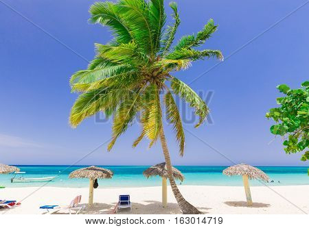 stunning gorgeous, amazing view of tropical white sand inviting beach and ocean against pretty blue sky background on sunny bright day