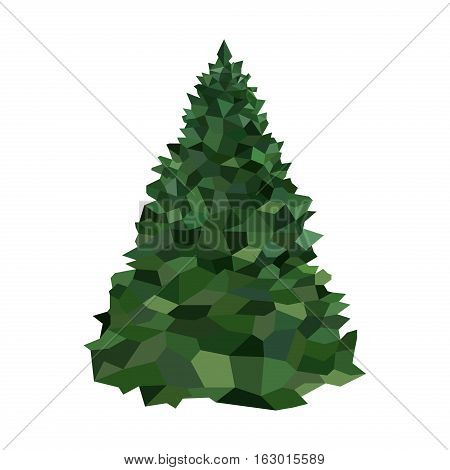 Spruce pine tree isolated on white. Xmas element park coniferous flora polygon geometric graphic. Environment trunk winter polygonal christmas pine tree origami shape.