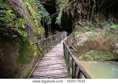 Pathway Wooden Footbridge