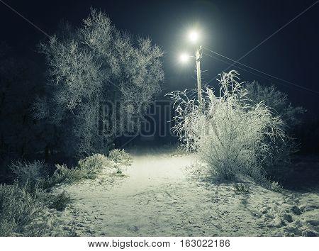 the night snowy rural road lighting lanterns