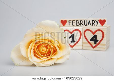 Valentine's day composition with yellow rose and wooden calendar.  Handwritten February 14th, red hearts. Bright background.