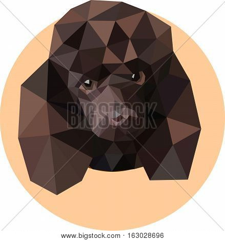 Cute poodle in a polygon style. Fashion illustration of the trend in style on a peach background. Portrait of a domestic pet dog