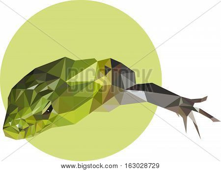 Green lizard in a polygon style. Fashion illustration of the trend in style on a green background.