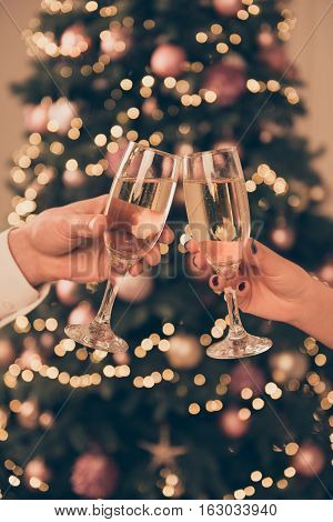 Close Up Photo Of Two People Clinking With Glasses Of Shampagne On The Background Of Xmas Tree
