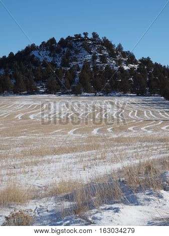 A hay field in winter in Central Oregon that has fresh snow and shows the patterns from the summer cuttings with a tree covered butte in the background.