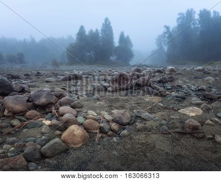 Misty Morning With Rocks On Foreground And Evergreen Forest, Altai Mountains Highland Nature Autumn Landscape Photo. Beautiful Russian Wilderness Scenery Image.
