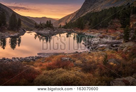 Pink Sky And Mirror Like Lake On Sunset With Red Color Growth On Foreground, Altai Mountains Highland Nature Autumn Landscape Photo. Beautiful Russian Wilderness Scenery Image.