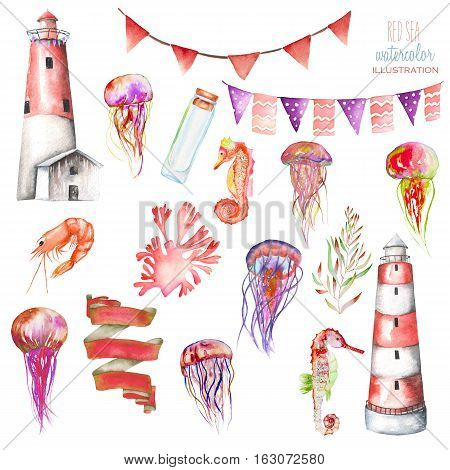 Set of watercolor elements to the marine theme: lighthouse, jellyfishes, flags, sea horses, seaweeds and others; hand painted isolated on a white background